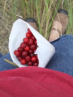 CherryPickingBucket