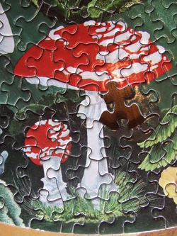 MushroomPuzzleClose