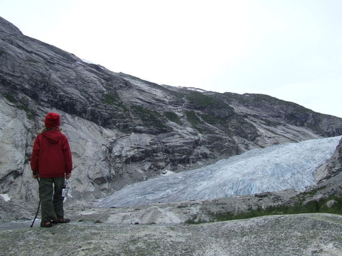 Nygardsbreen5