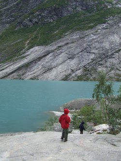 Nygardsbreen8