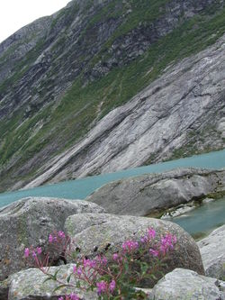 Nygardsbreen9