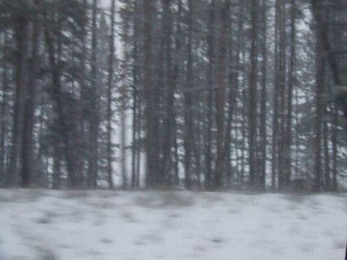 WinterBlur2