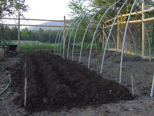 GardenJune2009b