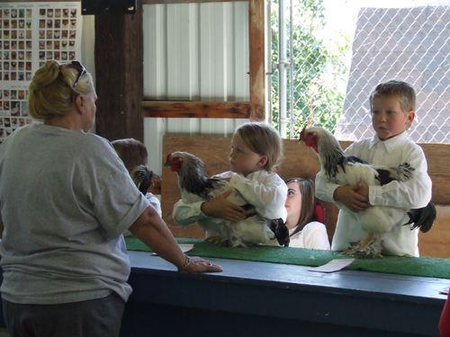 ChickenShow2