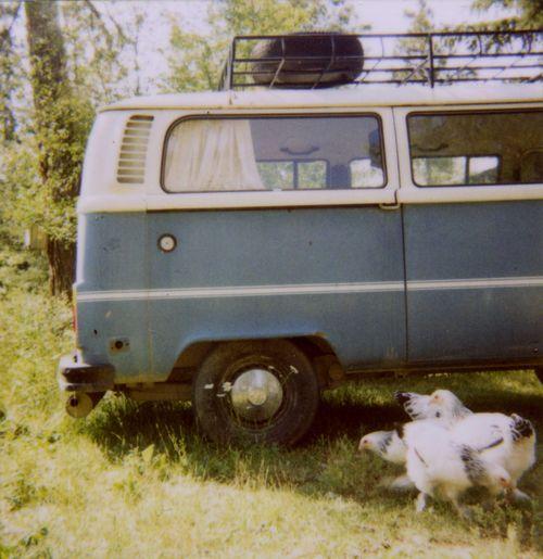 Polaroidbus