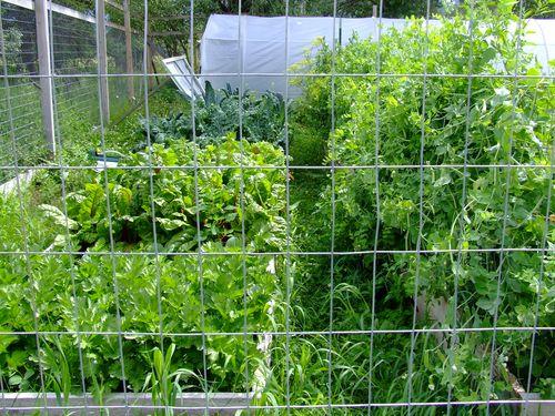 Gardenchrome