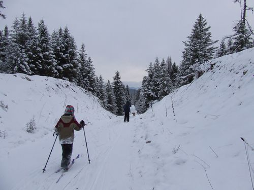 Narnia1.75