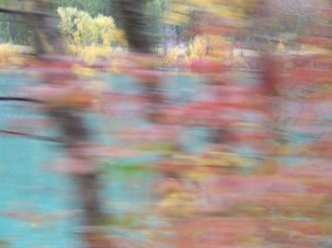 Autumn2007_26