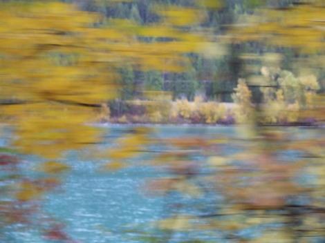 Autumn2007_27