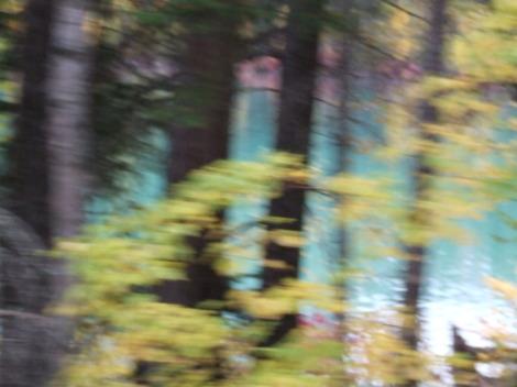 Autumn2007_28