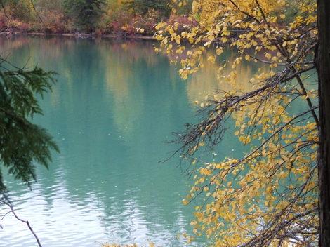 Autumn2007_29