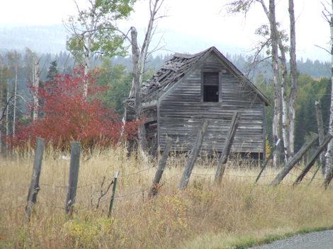 Autumn2007_31_2