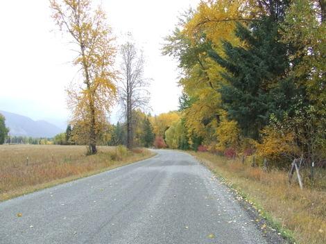 Autumn2007_32