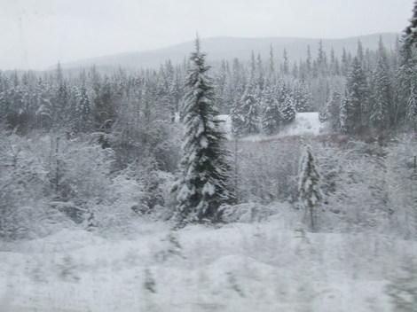 Winterroad11_2
