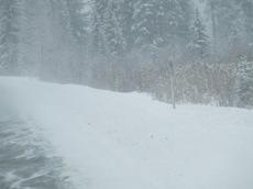 Winterroad4