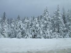 Winterroad5_2