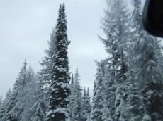 Winterroad7