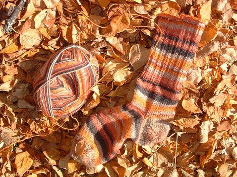 Autumnstripes2