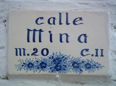Callemina