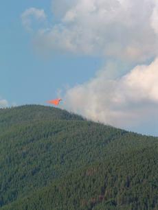 Fireplane2
