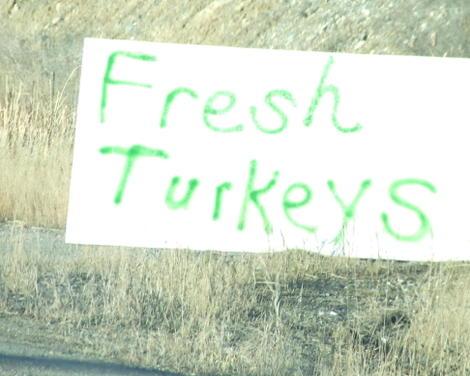 Freshturkey_1