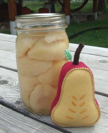 Mayfruitpincushion