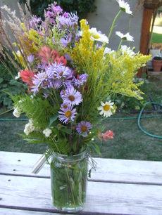 Ottowaflowers_2