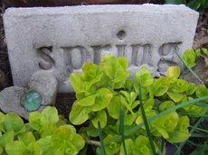 Signofspring1