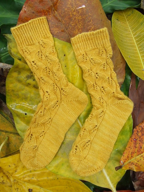FINISHED KNITTING: Embossed Leaves Socks