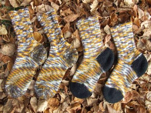 Tiger Tiger Socks